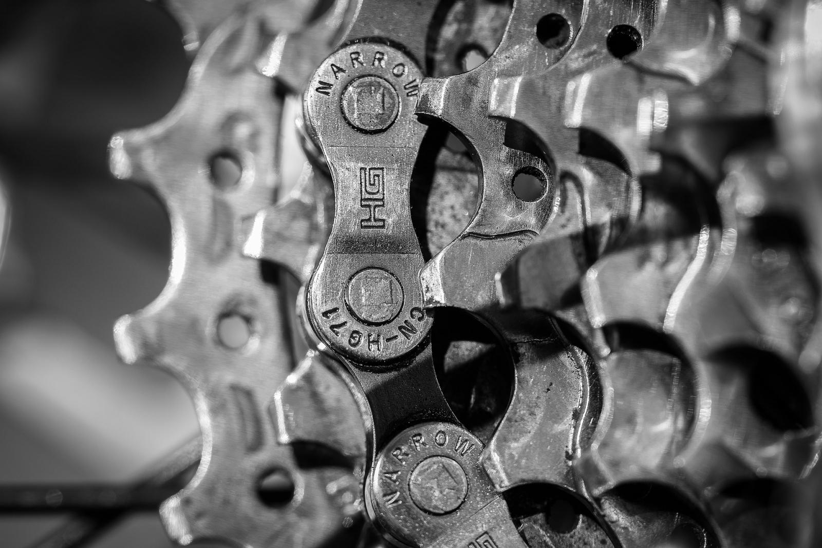 【汽車專知】變速箱是什麼?手排、自排差在哪?